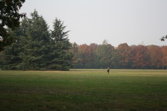 Parco Nord Milano foto di Stefano Bolognini